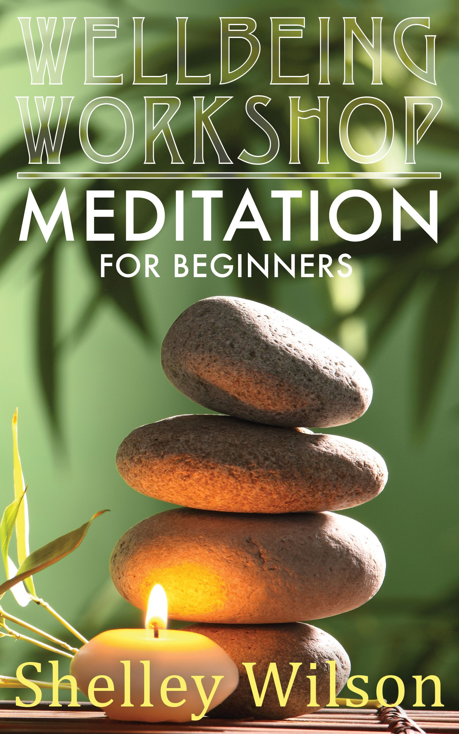Meditation for Beginners: Wellbeing Workshop Series by Shelley Wilson